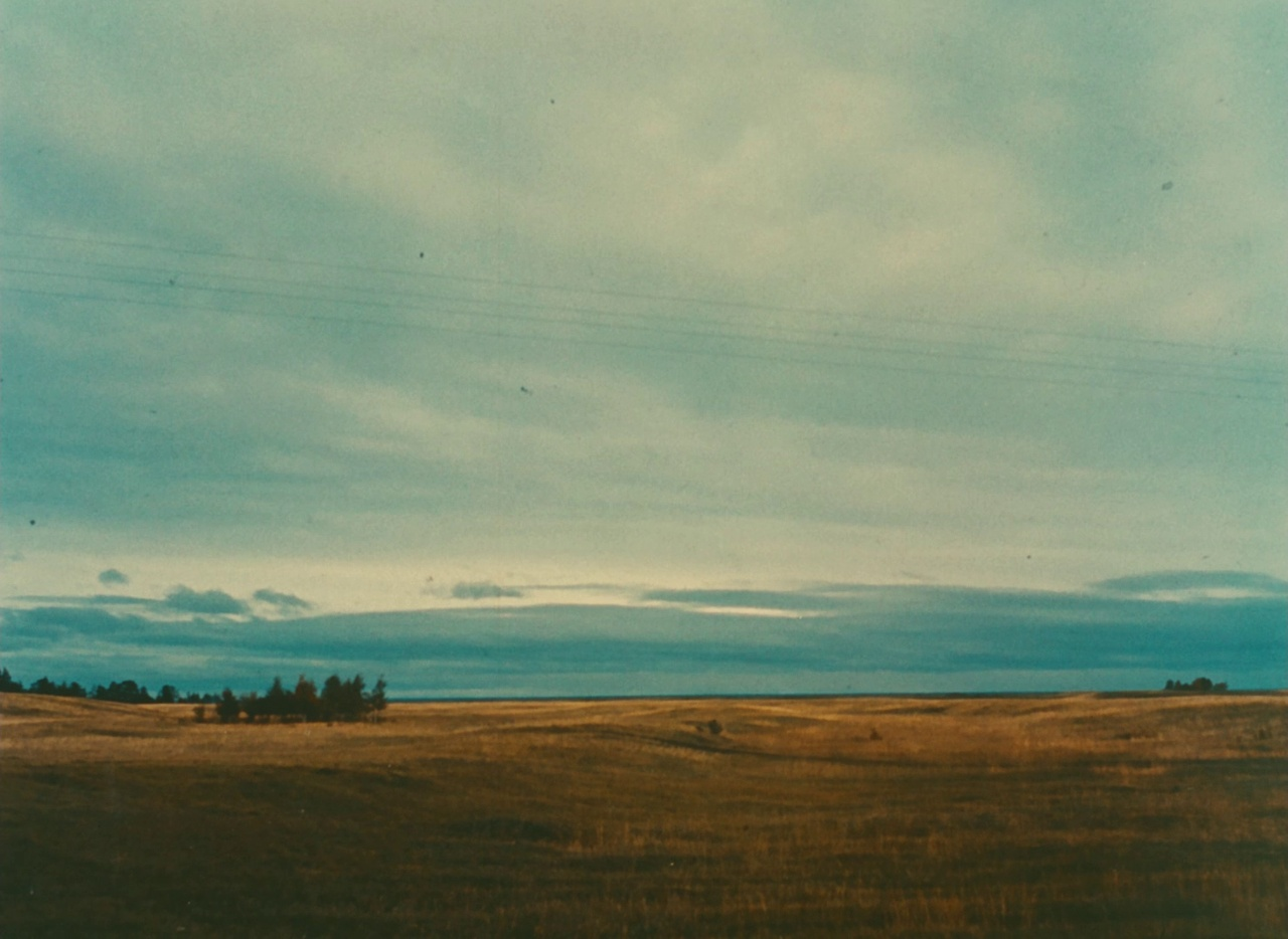 Galerie Lettre de Sibérie 3