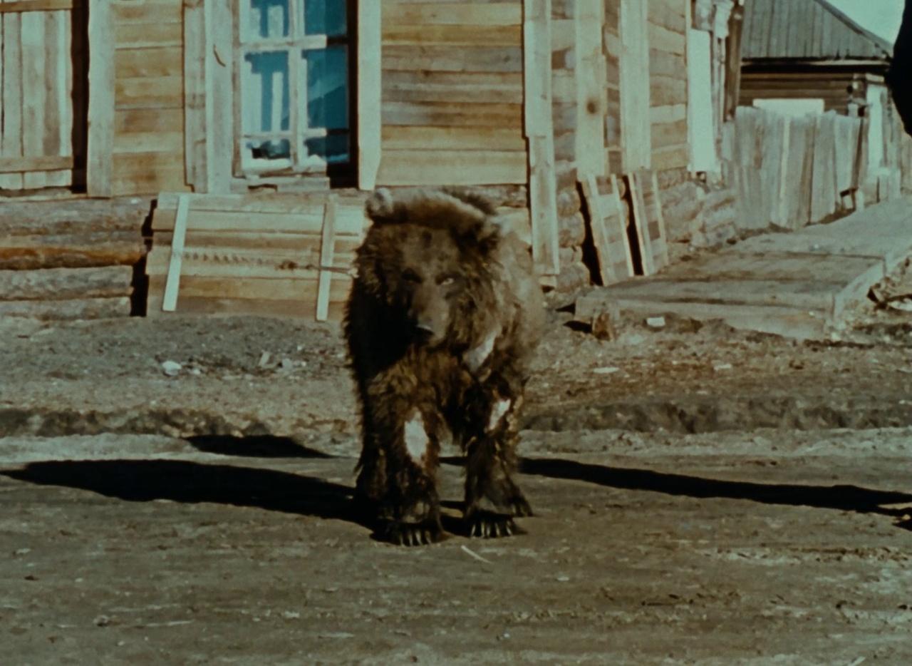 Galerie Lettre de Sibérie 8