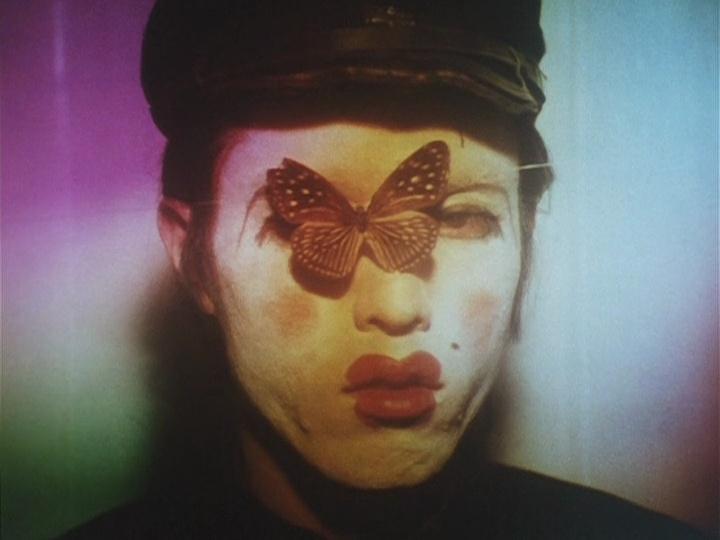 Galerie Butterfly 2