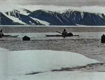 Galerie Vive la baleine 3