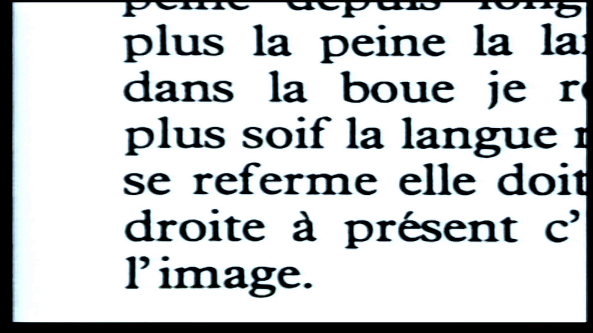 Galerie Le Livre d'image 2