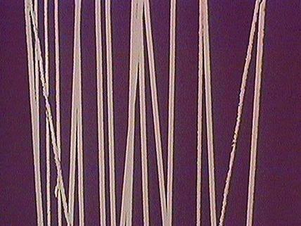 Galerie Lignes verticales 8